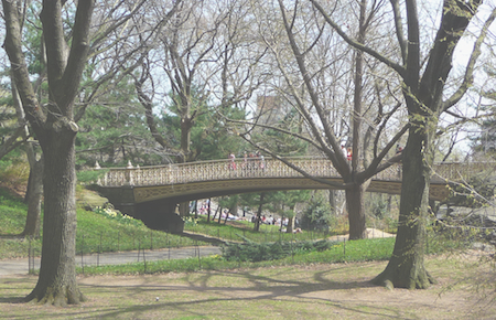 Bridge in Central Park